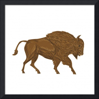 North American Bison Buffalo Charging Retro