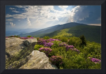 Roan Mountain From Appalachian Trail Near Jane's B