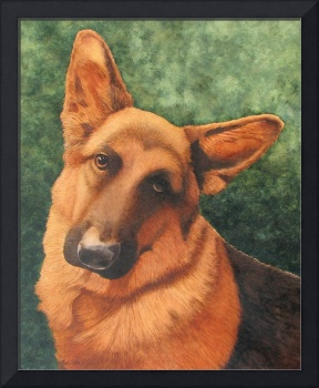 German Shepherd watercolor painting