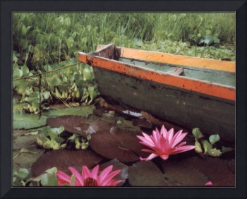 Colombian Boat and Flowers