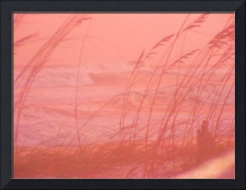 15 foot Waves from Ike Behind the Seaoats