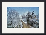 Winter Path at First Snowfall (HDR) by Christopher Seufert