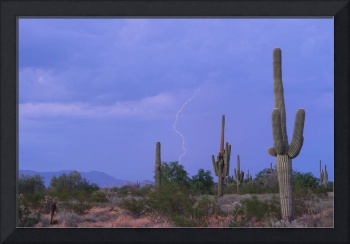 Southwest Desert Lightning Strike