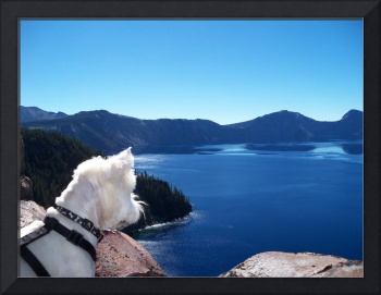 Take A Journey With Beni Around Crater Lake