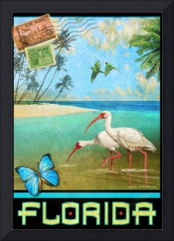 vintage florida travel poster with ibis