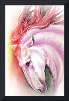 Andalusian horse red color splash