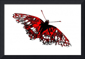 Butterfly - Black White And Red Series