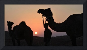 Sunset in the desert in Rajasthan