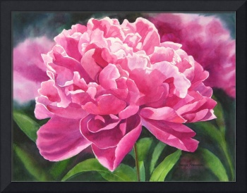 Rose Colored Peony
