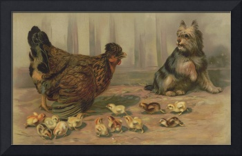 Vintage Chicken Farm and a Dog Illustration (1891)