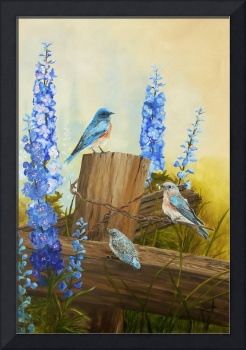 Bluebird Family And Delphiniums