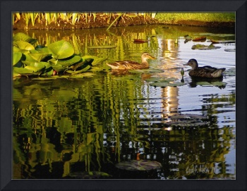 Ducks in a Water Lily Pond MEDITATION WALL ART