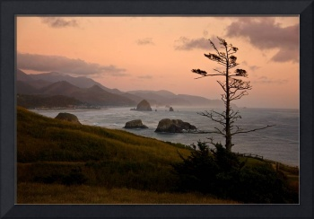 Cannon Beach from Ecola Point