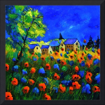 blue red poppies77