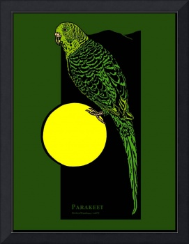 Parakeet and Full Moon