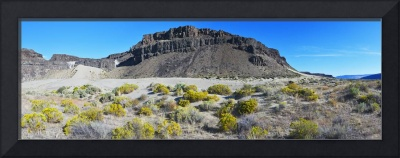 Frenchman Coulee Dunes & Rabbitbrush panorama