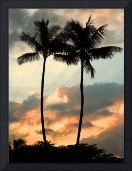 Twin palm trees at sunset, Kauai, Hawaii