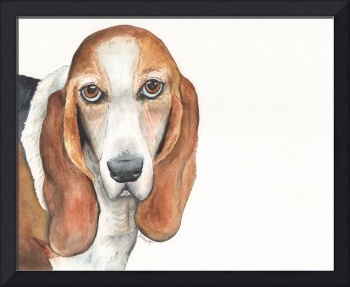 Abby the Vocal Vaulting Basset