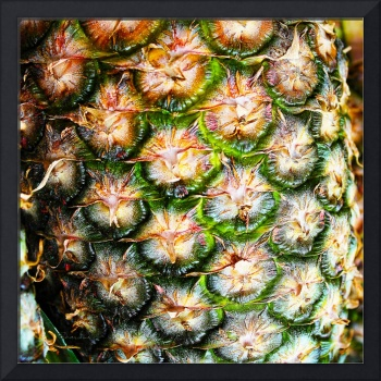 Abstract Nature Tropical Pineapple A712078 Square