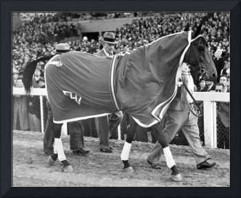 Seabiscuit Horse Racing #4