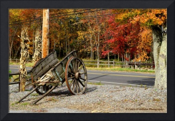New England Apple Cart