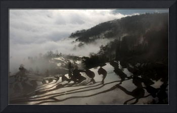 Sunrise at the rice terraces,Yuan Yang,China