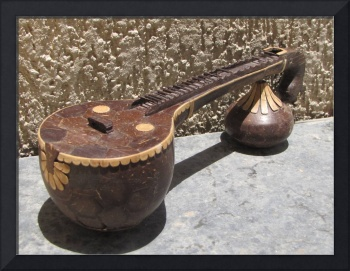 Veena in Coconut shell