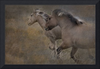 twohorsesrunningpainterly
