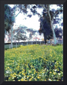 Flowers in the Meadow Balboa Park