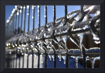 Freezing Rain on Fence