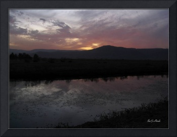 Sunset at Hula valley - Israel