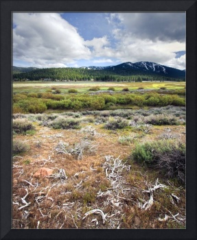 tahoe Plains