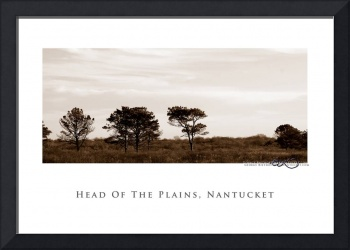 Nantucket Poster-6