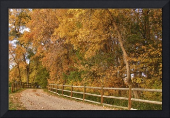 Autumn Country Ranch  Road
