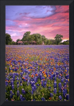 Heavenly Sunset in the Hill Country