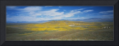 Panoramic view of a landscape