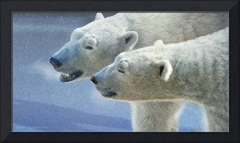 brothers on smooth-ice polar bears