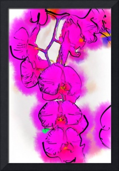 Abstract Orchid 1