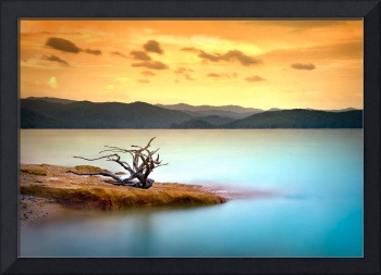 Summer Solace - Lake Jocasse Sunset Landscape