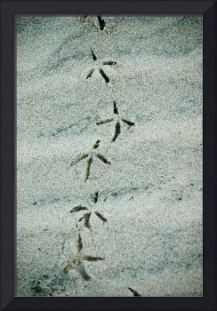 sand abstract II