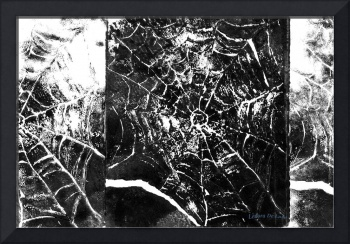 Abstract Spider Web Print
