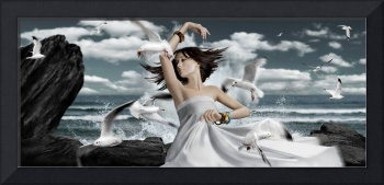 Dance with seagulls