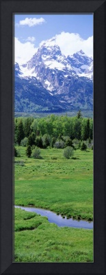 Black Tail Ponds Overlook Grand Teton National Pa
