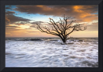 Botany Bay Edisto Island SC Boneyard Beach Sunset