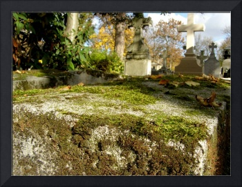 Mossy Grave in Pere Lachaise