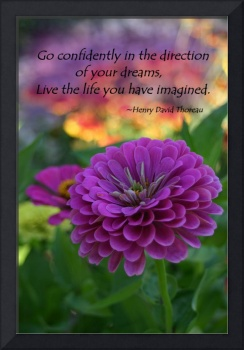Go Confidently in the direction