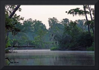 Bend in the Bayou