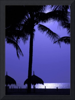 Moonlit Beach