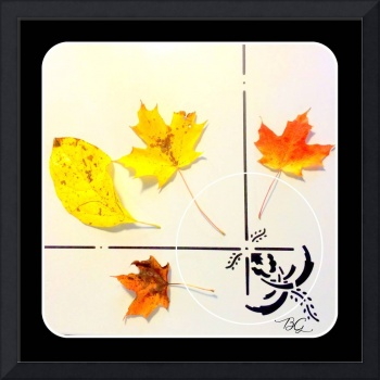 Autumn leaves on her kitchen table