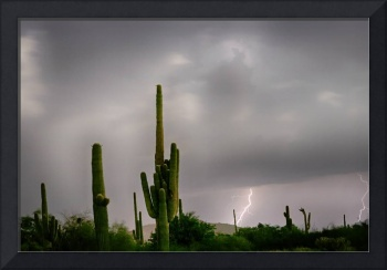 Sonoran Monsoon Lightning Thunderstorm Delight